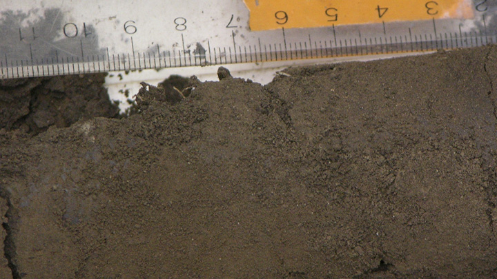 What is soil made of bioed online for Soil is made of