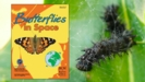 Thumbnail Image for Butterflies in Space